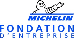LOGO FONDATION MICHELIN - Bleu